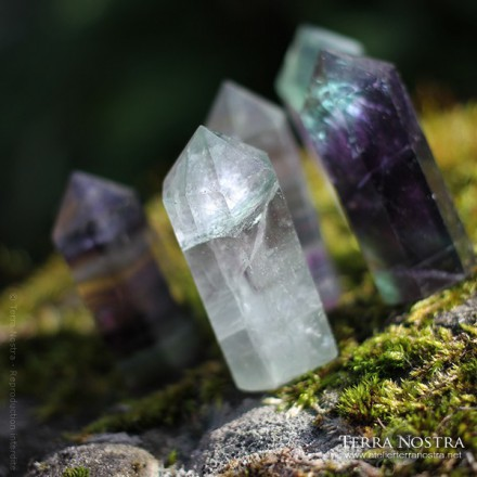 [SOLD OUT] 3cm green fluorite double point